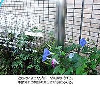 Img_1235_2