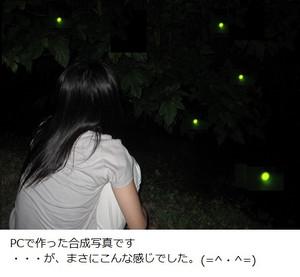 Img_5003_2